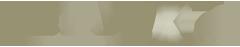 MetArt X logo